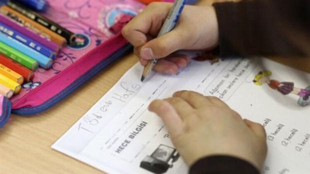 Ankara'nın açacağı okullar Hollanda'yı endişelendirdi