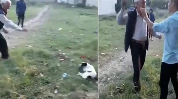 Köpeği ve bir çocuğu taşlayan adam gözaltına alındı