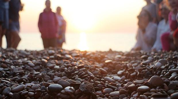 Çıralı'da son yavru caretta caretta denize ulaştı
