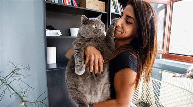 Kedi Shanti iki buçuk ayda 4,5 kilo verdi