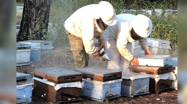 Arı kovanları içinde 152 kg uyuşturucu sakladılar