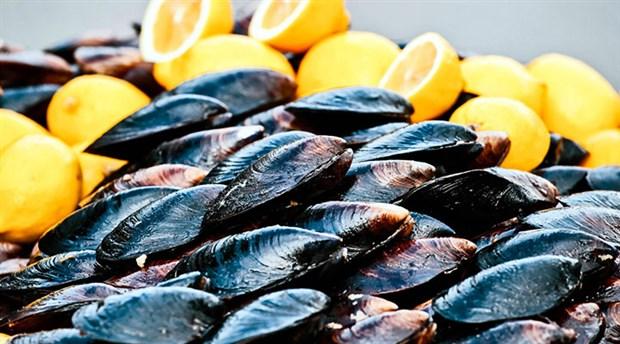 'Türkiye'deki midye dolmaların yüzde 91'inde mikroplastik var'