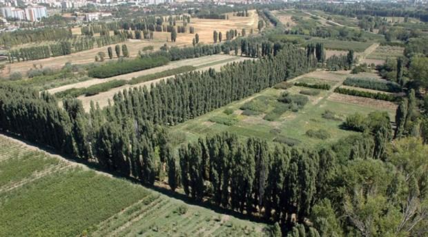 Ankara Belediyesi, AOÇ arazisinde üretime başlıyor
