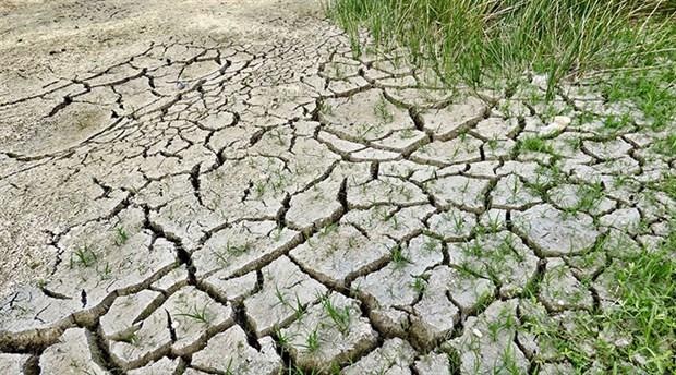 BM'den 'iklim değişikliği' uyarısı: Yıkıcı etkiler doğurabilir