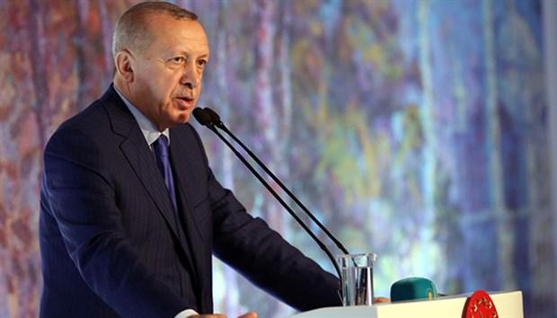 Erdoğan'dan termik santral yasasına veto açıklaması
