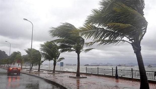 Meteoroloji'den kuvvetli rüzgar ve kar yağışı uyarısı