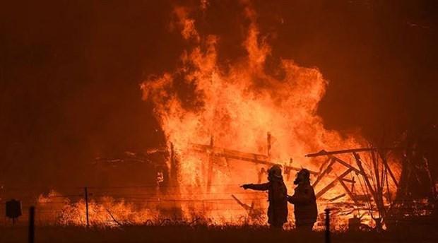 Avustralya yangınları: Neden 4 aydır söndürülemiyor, bilançosu ne?