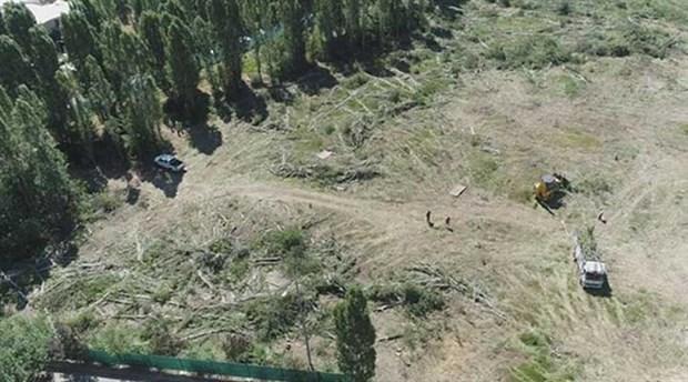 ODTÜ Rektörü Kök'e orman davası