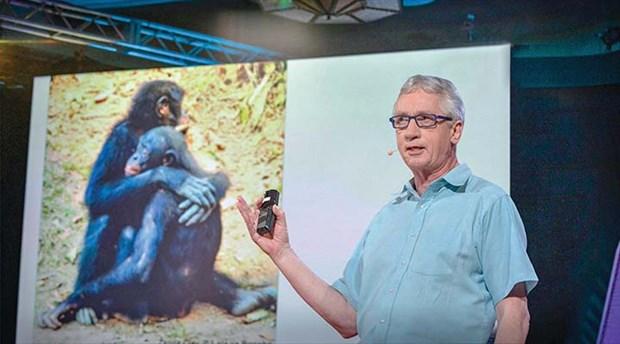 Primatolojide yeni keşifler