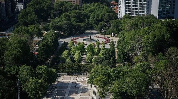 İBB, Gezi Parkı'ndaki kuruyan ağaçları kaldırıyor