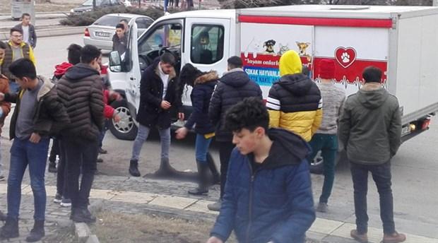 Yenikent'te köpekleri zehirleyerek öldürdüler!