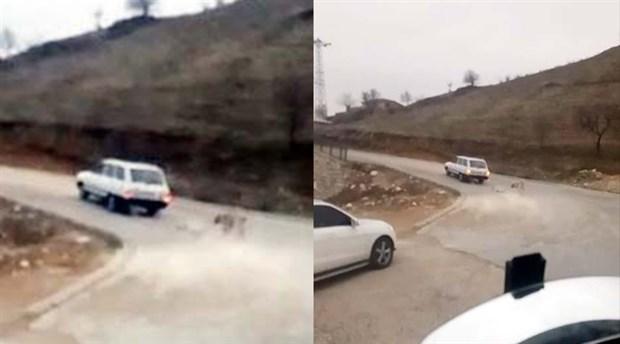 Adıyaman'da bir kişi köpeği otomobile zincirle bağlayarak sürükledi