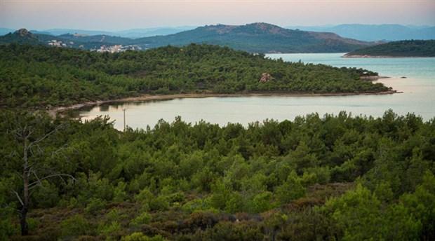 Ayvalık Tabiat Parkı'nın ihaleye çıkması istenmiyor