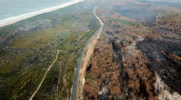 Avustralya'daki yangınlardan nüfusun yüzde 75'i etkilendi