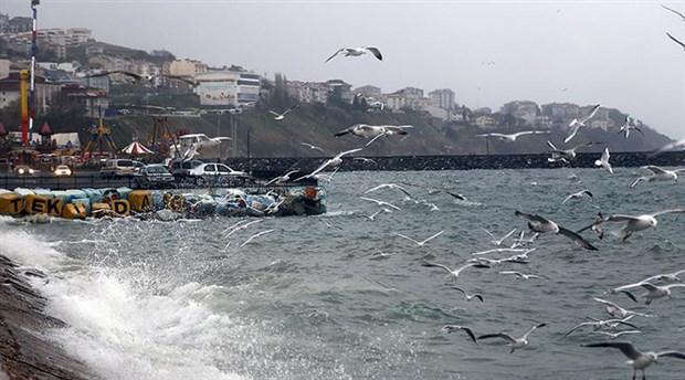 Meteoroloji'den İstanbul için lodos uyarısı: BUDO seferleri iptal