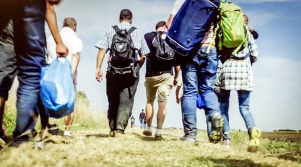 Uluslararası göçmen sayısı  272 milyona yükseldi