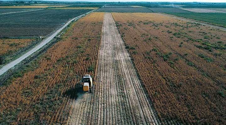 ZMO Yönetim Kurulu Başkanı Suiçmez:  Derhal tarımsal üretim seferberliği ilan edilmelidir