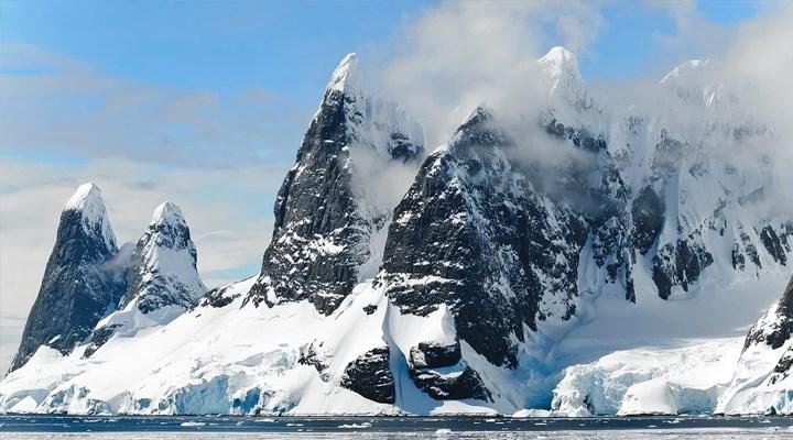 Antarktika'da orman izlerine rastlandı