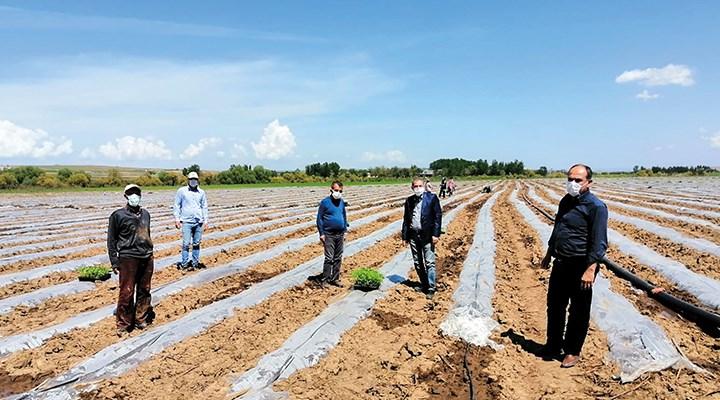 Talepleri karşılanmayan çiftçiler geleceklerinden endişeli
