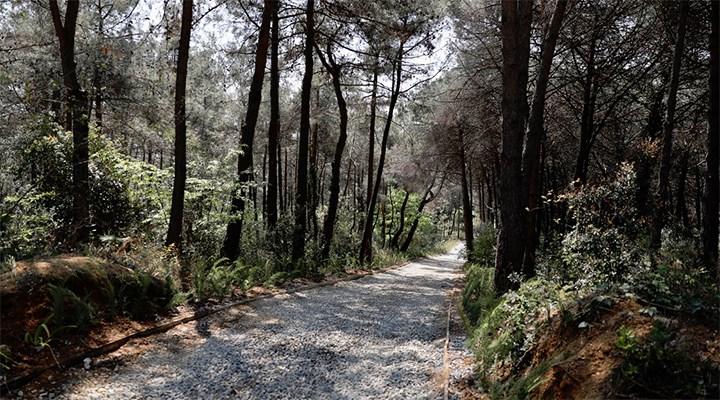 İstanbullulara Atatürk Kent Ormanı müjdesi
