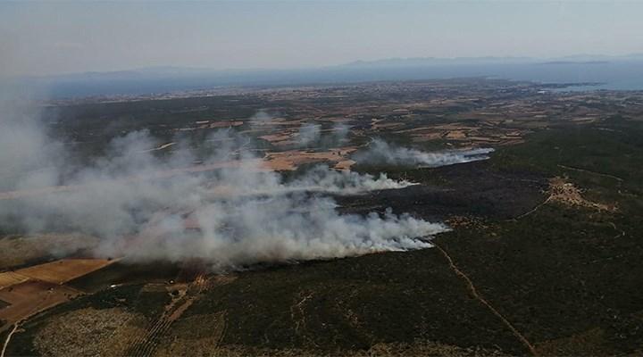 Didim'deki yangında 45 hektar makilik kül oldu