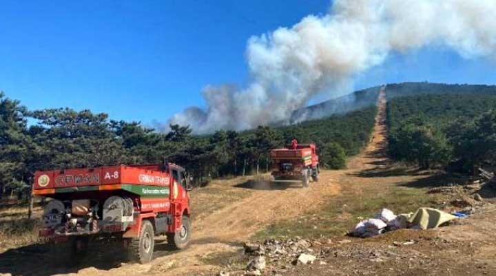 İstanbul'daki orman yangını kontrol altına alındı