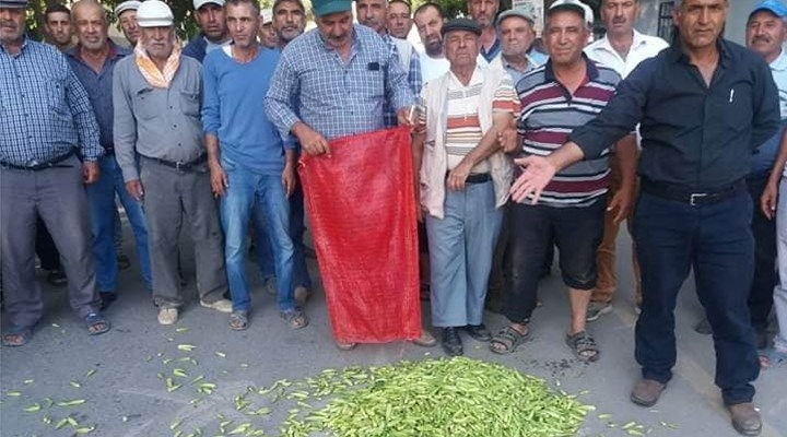 CHP'li Tezcan'dan eylem yapan bamya üreticilerine destek