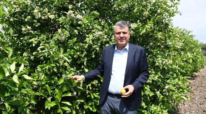 Patates ve soğan ihracatında ön izin şartının kaldırılmasına tepki