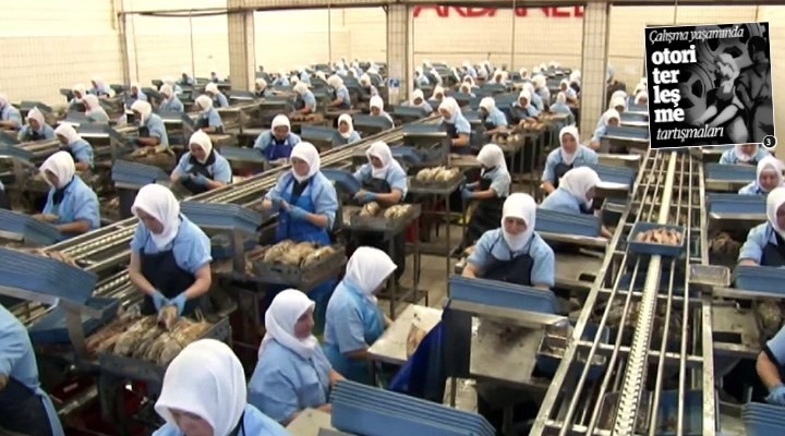 MÜSİAD önerdi, Dardanel uyguladı: Kadınlar üretim alanına kapatılıyor