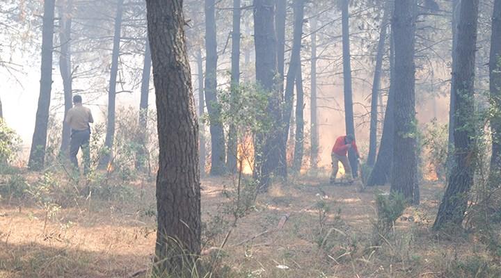 Aydos Ormanı'nda yangın: 1 gözaltı