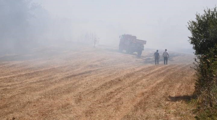 Edirne'de orman yangını: 100 metrekarelik ormanlık alan zarar gördü
