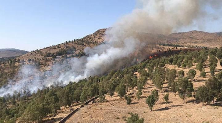 İzmir'de ormanlık alanda çıkan yangın söndürüldü