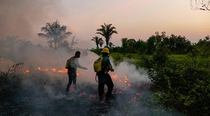 Amazonlar'da tehlike büyüyor: 10 günde 10 binden fazla yangın