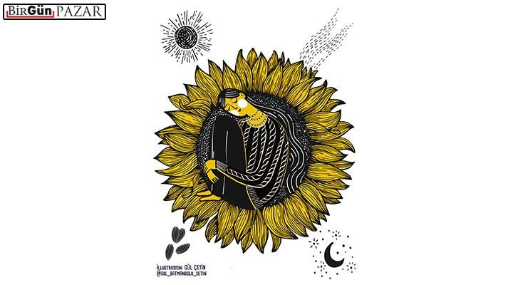 Güneşin aşkıyla kavrulan çiçek: Ayçiçeği