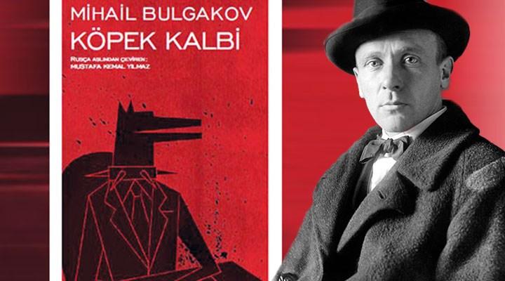 Bulgakov'un korkunç ve neşeli devrimci, köpeği