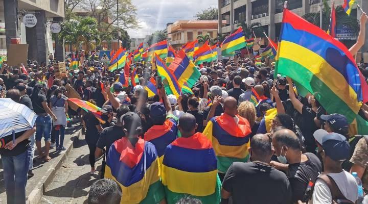 Mauritius'da binlerce kişi yunus ölümlerini protesto etti