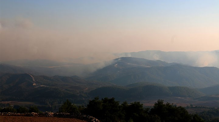 Suriye'de sınırda çıkan ormanyangını Türkiye'ye sıçradı