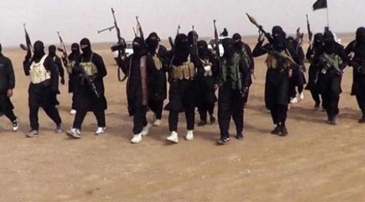 Selefi örgütler kamu güvenliği için tehdit: Panzehiri laiklik