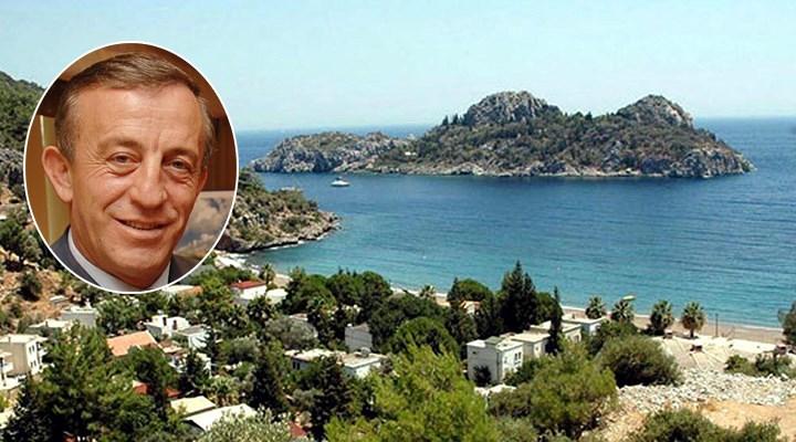 Ali Ağaoğlu, şatolu adasını 15 milyon dolara satışa çıkardı
