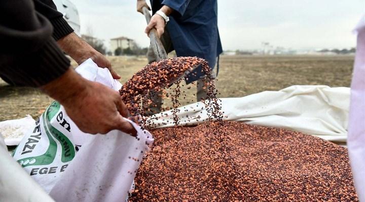 Ankara Büyükşehir Belediyesi'nden çiftçilere tohum desteği