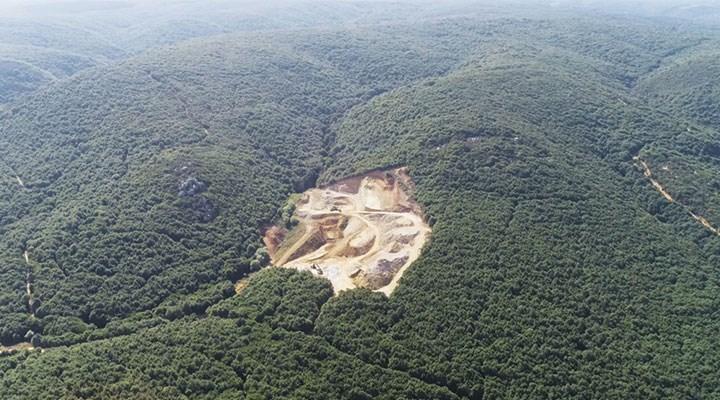 İktidarın mega projeleri, şirketlerin maden ocakları: Ormana, hayvana, suya düşmanlar