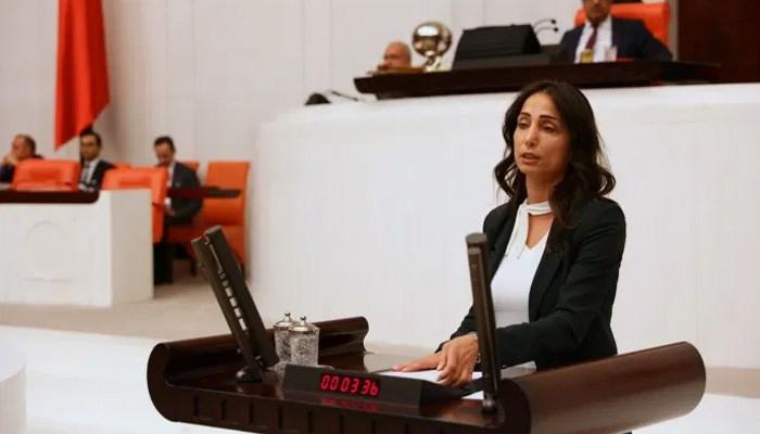 HDP'li Hatimoğulları: Hatay yangınıyla maden projesinin bir bağlantısı var mı?