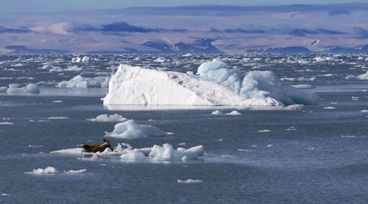 Kuzey Buz Denizi, izlenmeye başladığından beri ilk kez Ekim'de donmadı