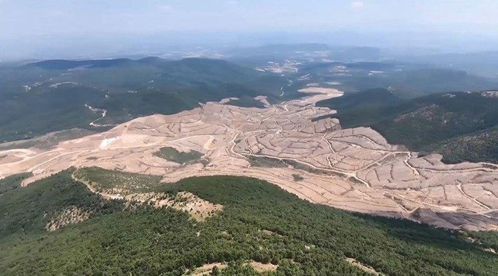 Kaz Dağları'nda 195 bin ağacı kesen Alamos Gold, devletten tazminat alarak sahadan çekildi