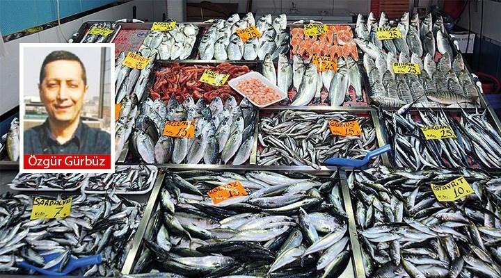 Balıklarda arsenik oranı yüksek