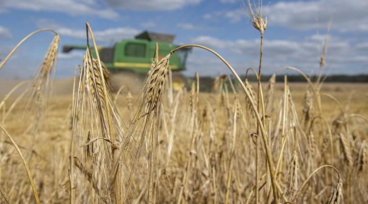 Tahıla ithalat darbesi