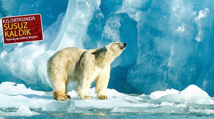 İklim krizinin etkileri büyüyor: Kış ortasında kuraklık!