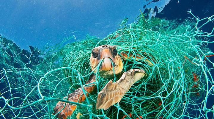 Denizlerde geri dönüşüm: Hayalet ağlardan siperlik