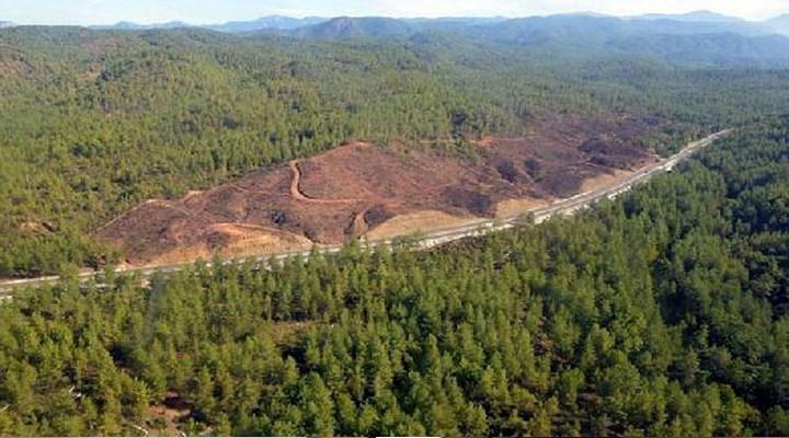 Ülke genelinde 133 altın madeni ruhsatı verilmiş