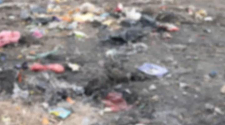 Diyarbakır'da bakıma muhtaç yüzlerce sokak hayvanı şehir çöplüğüne bırakıldı